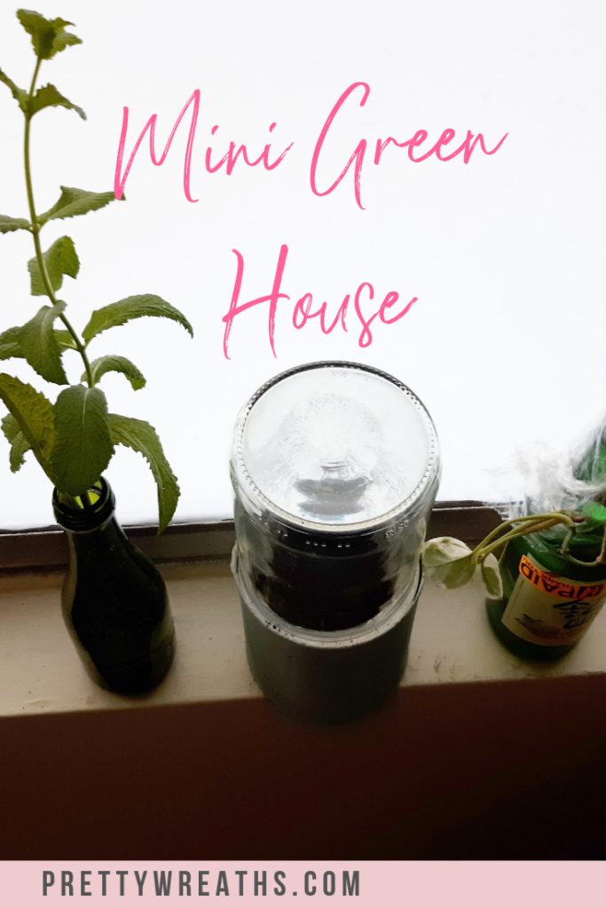 If you want to start a garden inside your home, then here's how you can do it very easily, you don't even need a window! #indoorgardening #indoorgarden #gardeninside #containergardeningindoors